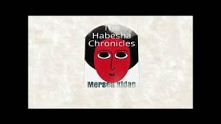 """Book Launching: 'The Habesha Chronicles' by Mersea Kidan"""